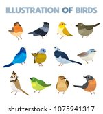 illustration of several birds.... | Shutterstock .eps vector #1075941317