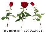 set of three beautiful vivid... | Shutterstock . vector #1076010731