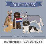 dogs by country of origin.... | Shutterstock .eps vector #1076075255