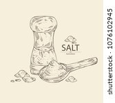 salt  spoon with salt and salt...   Shutterstock .eps vector #1076102945