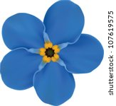 Forget Me  Blue Flower Isolated