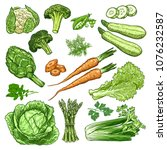 hand drawn fresh vegetables set.... | Shutterstock .eps vector #1076232587