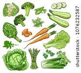 hand drawn fresh vegetables set.... | Shutterstock .eps vector #1076232587