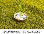 plant growing out of algeria...   Shutterstock . vector #1076256659