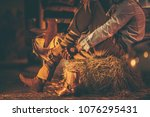 Cowboy in the Barn Wearing Boots While Seating on the Pile of Hay. American Farming Theme. - stock photo