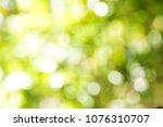 bokeo natural light background. | Shutterstock . vector #1076310707