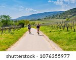 cyclists on grape mountain. ... | Shutterstock . vector #1076355977