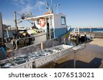 A Fishing Boat With The Catch...