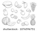 fruit isolated sketches. apple  ... | Shutterstock .eps vector #1076596751
