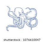 Octopus or Kraken drawn with contour lines on white background. Marine animal or mollusc with tentacles, deep sea creature, underwater inhabitant, ocean monster. Monochrome vector illustration