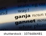 Small photo of ganja ganja concept.