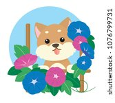 shiba dog and morning glory | Shutterstock .eps vector #1076799731