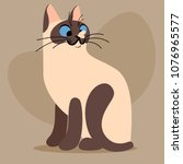 cartoon bicolor kitten | Shutterstock .eps vector #1076965577