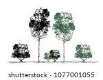 trees  forest  grove  bushes ... | Shutterstock .eps vector #1077001055