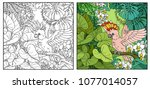 wild jungle with major mitchell'... | Shutterstock .eps vector #1077014057