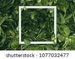 square white frame and... | Shutterstock . vector #1077032477