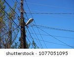 the post is electric with wires ... | Shutterstock . vector #1077051095