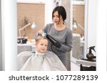 professional female hairdresser ... | Shutterstock . vector #1077289139