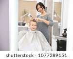 professional female hairdresser ... | Shutterstock . vector #1077289151