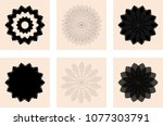 set of round design elements | Shutterstock .eps vector #1077303791