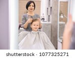 professional female hairdresser ... | Shutterstock . vector #1077325271