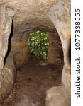 Small photo of Old tunnel underpass of stone with mold with opening of view of green trees.