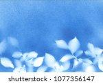 beautiful botanical... | Shutterstock . vector #1077356147