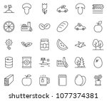 thin line icon set   plank... | Shutterstock .eps vector #1077374381