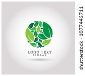 leaf circle   round logo.... | Shutterstock .eps vector #1077443711