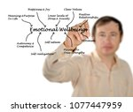 components of emotional...   Shutterstock . vector #1077447959