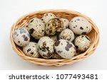 Fresh  Farm  Raw Quail Eggs On...