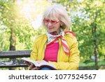 senior woman reading a book... | Shutterstock . vector #1077524567