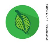 leaf icon vector illustration | Shutterstock .eps vector #1077540851
