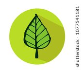 leaf icon vector illustration | Shutterstock .eps vector #1077541181
