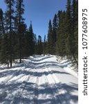winter scene in labrador  canada | Shutterstock . vector #1077608975