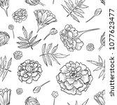 vector marigold seamless pattern | Shutterstock .eps vector #1077623477