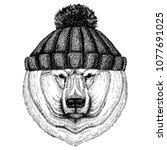 big polar bear  white bear cool ... | Shutterstock .eps vector #1077691025