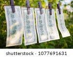100 dollar bills hanging on... | Shutterstock . vector #1077691631