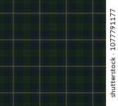 Green And Navy Blue Check...