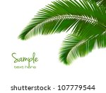 palm leaves on white background.... | Shutterstock .eps vector #107779544