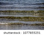 the sea waves | Shutterstock . vector #1077855251