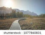 policeman's creek walkway and...   Shutterstock . vector #1077860831