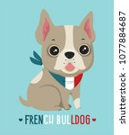 icon dog breed french bulldog.... | Shutterstock .eps vector #1077884687
