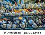turkey  istanbul 23 08 2018...   Shutterstock . vector #1077912455