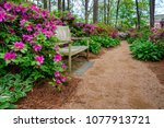 Azalea and flower garden with...