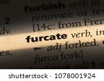 Small photo of furcate word in a dictionary. furcate concept