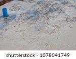 builder  fine cement floor  | Shutterstock . vector #1078041749