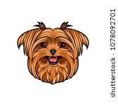 dog yorkshire terrier. smiling... | Shutterstock .eps vector #1078092701