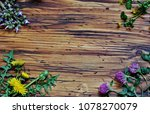 background with field or meadow ... | Shutterstock . vector #1078270079