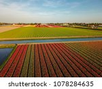 aerial view of the colorful... | Shutterstock . vector #1078284635